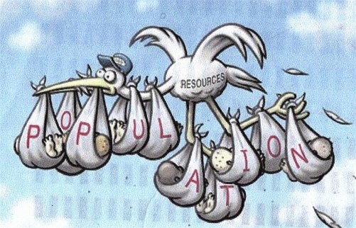 pop-stork-cartoon-1-e1349888807204